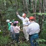 3グループに分かれ、サンプルの木の葉をもって山の中に。 サンプルがあるので同じ特徴の葉っぱを確認し、名札を付けます。 実際に生えている木の特徴も説明してもらいました。