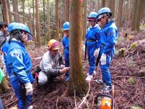 向原小学校 森の中で指導を受ける子供たち