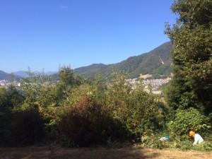 太田川を望めない景観